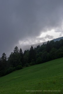 Alpesi hegyoldal