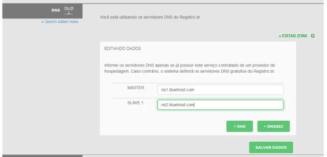 Informando detalhes no Registro.br