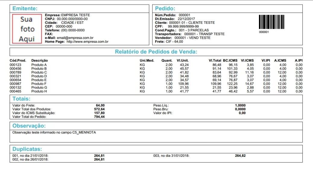 Exemplo dos dados do relatório