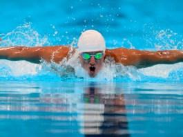 Tips Latihan Olahraga Renang Gaya Bebas Untuk Pemula