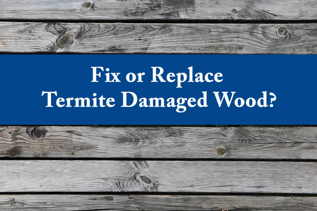 Termite Repair 101: Should I fix or replace termite damaged wood?