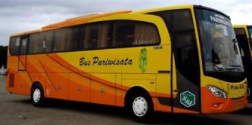 Tiket Bus Harga Bus PO Bus Agen Bus Damri Call Center