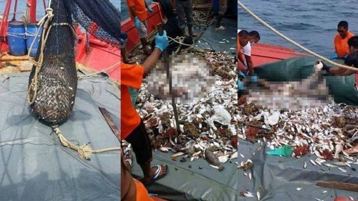 Geger Seorang Nelayan Di Kagetkan Dengan Hasil Tangkapannya Yang Bikin Ngilu