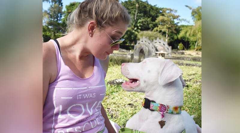 Kisah Sedih Anjing Buta dan Tuli Ketemu Majikannya