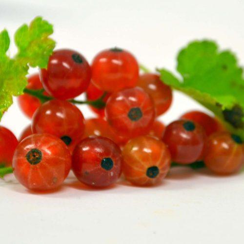 gadelier en fruit de gadele