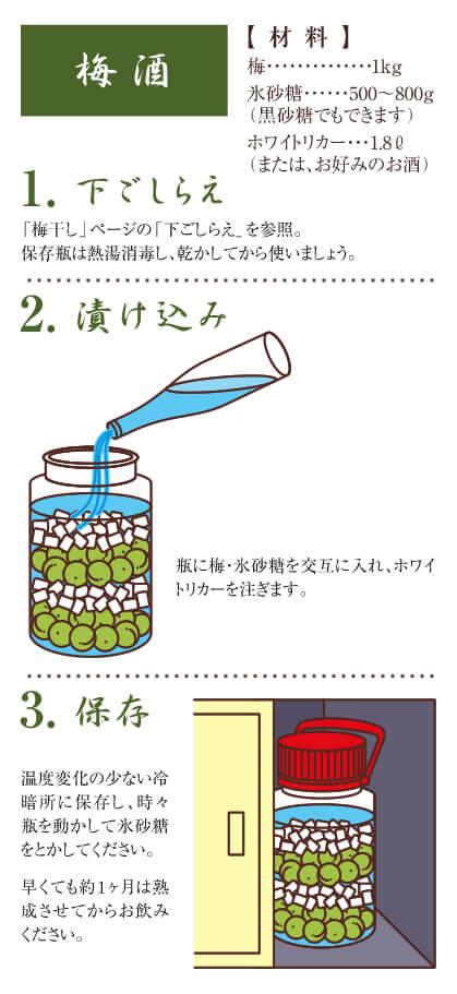 梅酒のレシピ