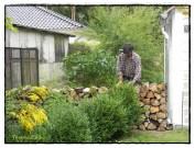 Mein Bester fing an, ihn zur anderen Grundstücksseite umzusetzen. My best started to put the wood to the other border of our garden.