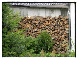 Mein Schatz stapelte am anderen Ende. My sweetheart stacked the wood at the other side.