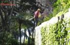 Gartenpflege - nicht ungefährlich --> alles steil - garden care - not harmless - all plunged