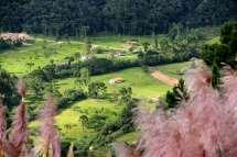 Vista dos campos catarinenses
