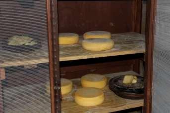 O famoso queijo Canastra, artesanalmente produzido na região
