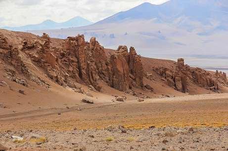 Monjes de La Pacana - Salar de Tara