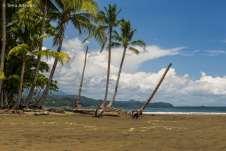 Parque Marino Ballena - Costa Rica-0067