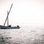 FineArt Pescadores