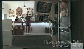 terracehouse-hawaii14wa2