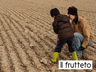 L'impianto del frutteto