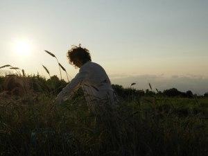 Il grano per fare il seme