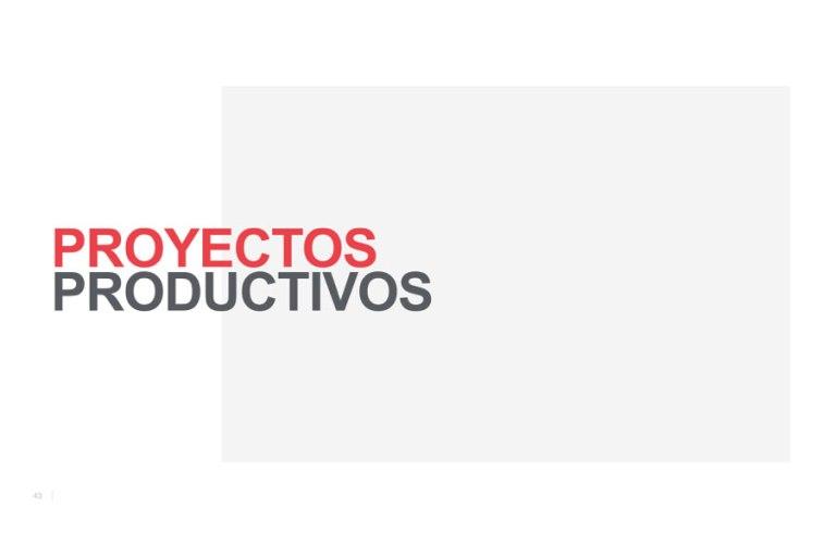 Proyectos-productivos-taller-terraetica