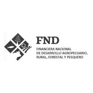logo-fnd