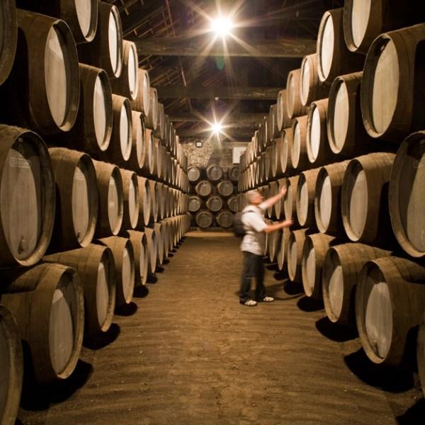 Graham´s wine cellar, Porto Vintage, Vila Nova de Gaia, Portugal