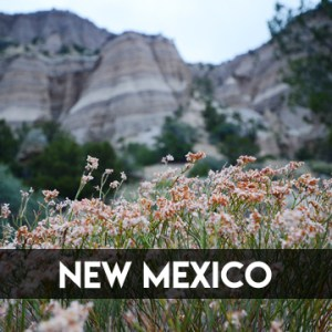 New Mexico || TERRAGOES.COM