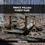 Prince William Forest Park || terragoes.com