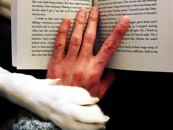 One Year of Reading Only the Woman-Written & 2018's Best (and Worst) Reads