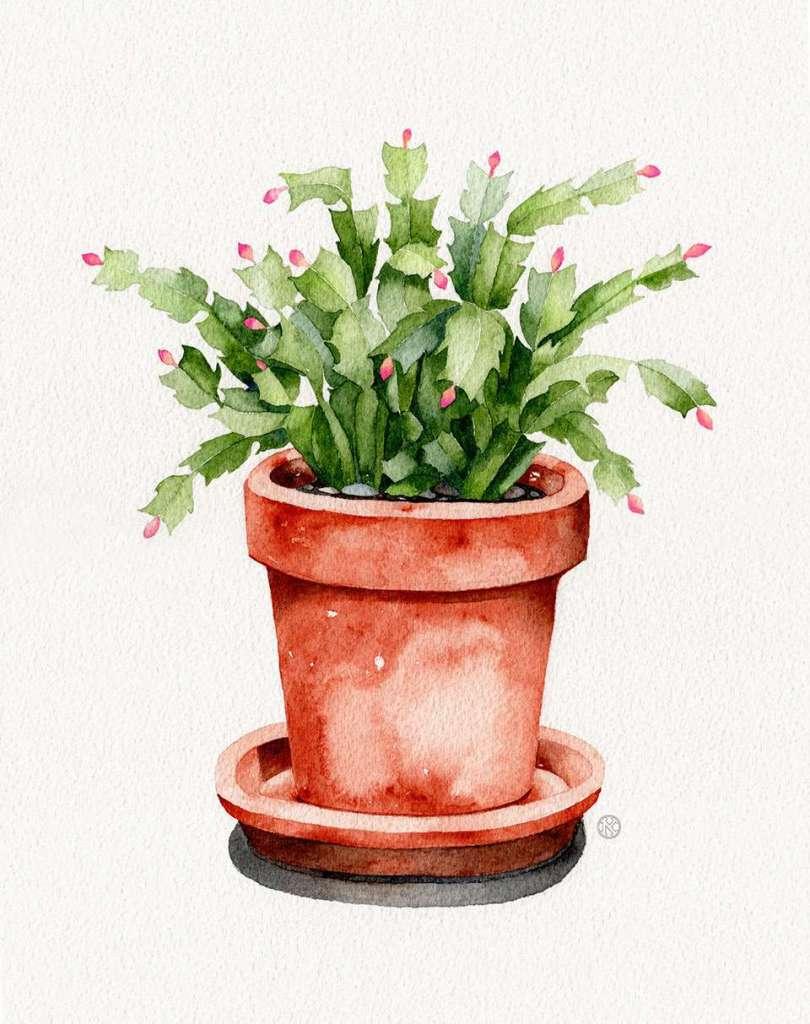 watercolor-vs-gouache-cactus1