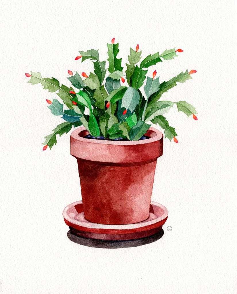 watercolor-vs-gouache-cactus2