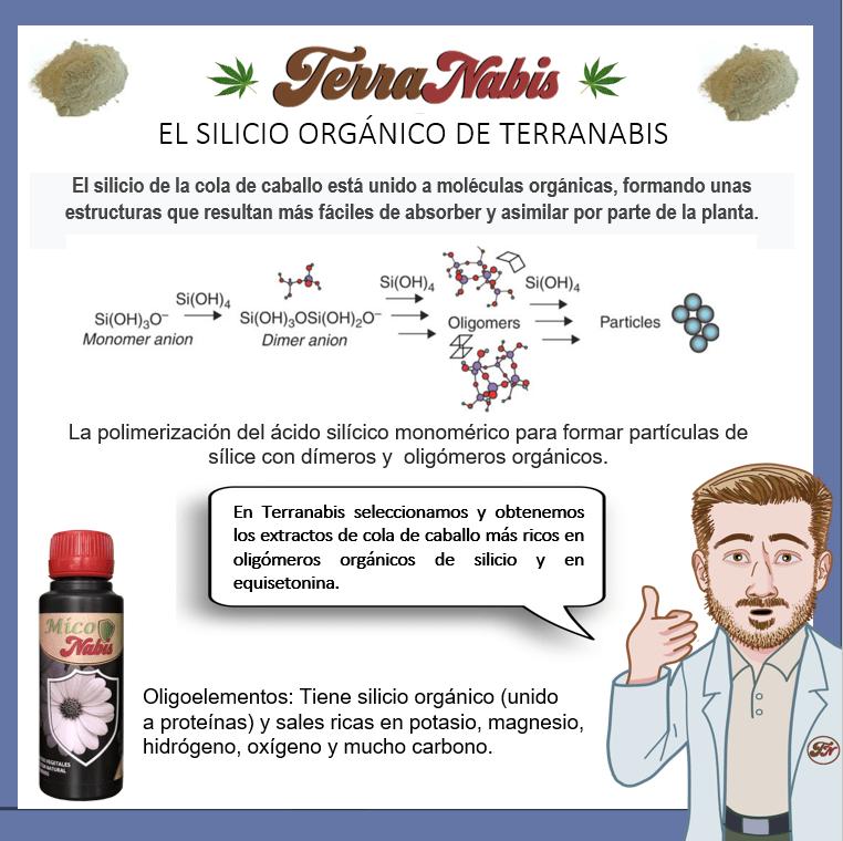 Dr. Nabis Silicio organico