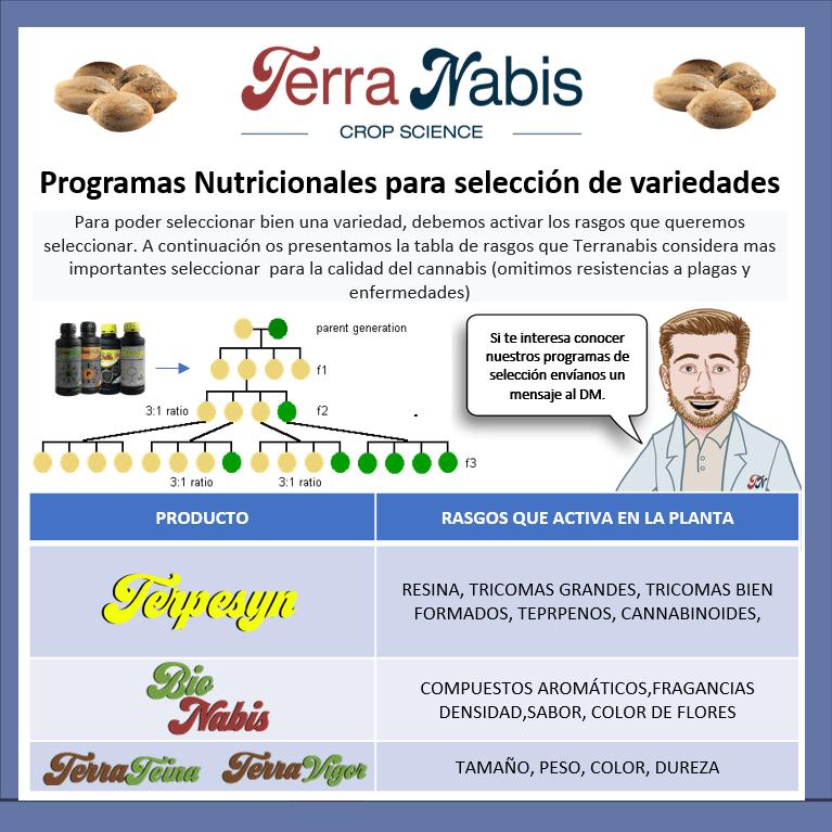 Dr. Nabis seleccion de variedades