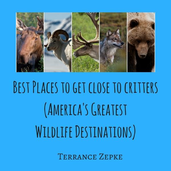 best wildlife destinations in america