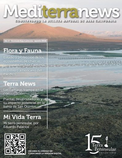 Mediterranews agosto 2016