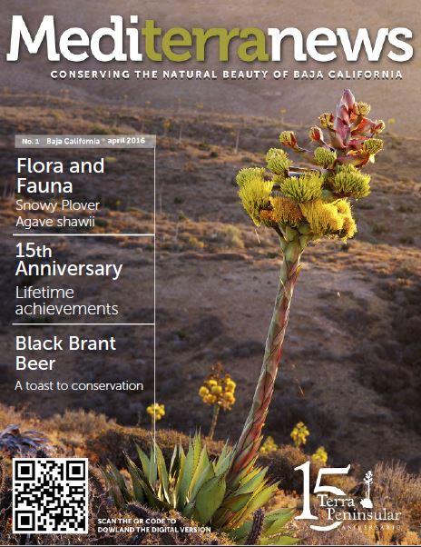 Vol. 1 Issue 1 (April 2016)