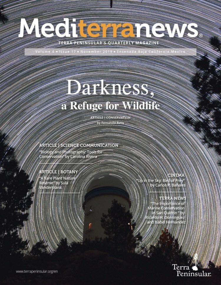 Vol. 4 Issue 17 (November 2019)