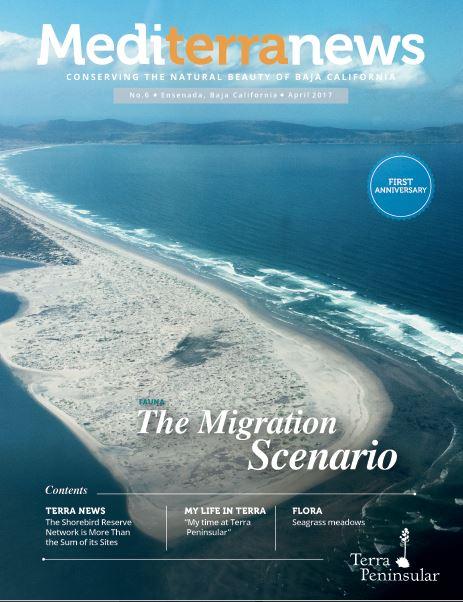 Vol. 2 Issue 6 (April 2017)