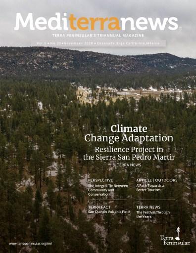 Mediterranews magazine Volume 5 Issue 20