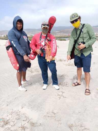 Equipo de salvavidas (izquierda y centro), y Alvaro San Jose (ayudante técnico) señalando un nido de Chorlo tildio (Charadrius vociferus), en la duna frente a La Lagunita