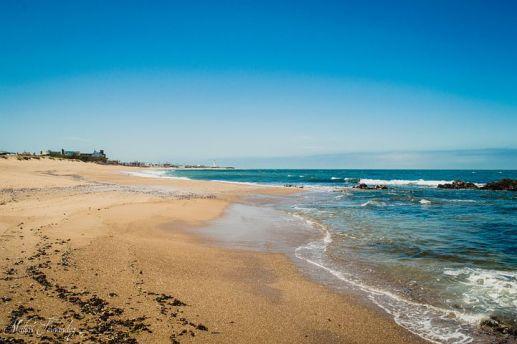 Spiaggia nel Dipartimento di Rocha