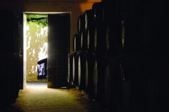 Bodega - interior contraluz
