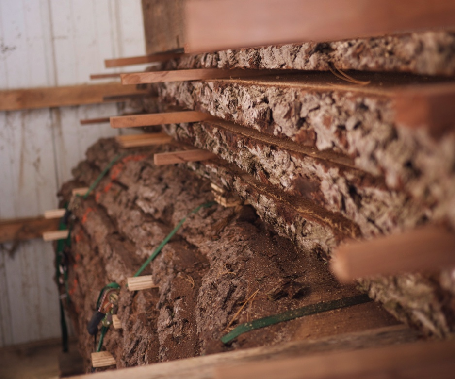 side view of large walnut slabs stacked in barn