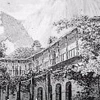 Histoire des juifs en Nouvelle Zélande 20 – Les juifs dans l'industrie et le commerce