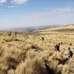 Trekking per les Simien Mountain