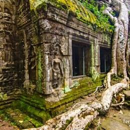 Ens endinsarem a la selva per admirar la indescriptible bellesa dels Temples d'Angkor són el final perfecte i somiat d'aquest viatge.