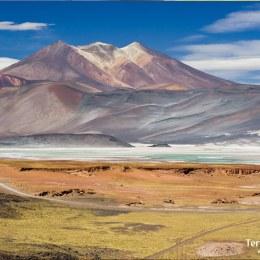 Adentrarse en el Desierto de Atacama