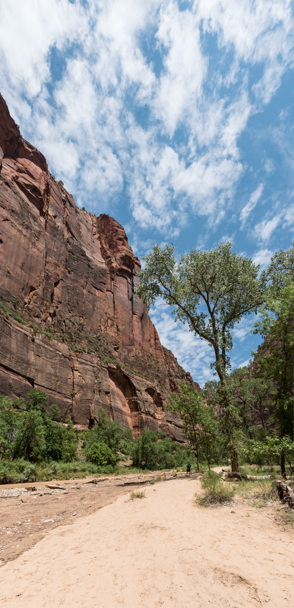 LR v Pano Perspective _Zion National_293