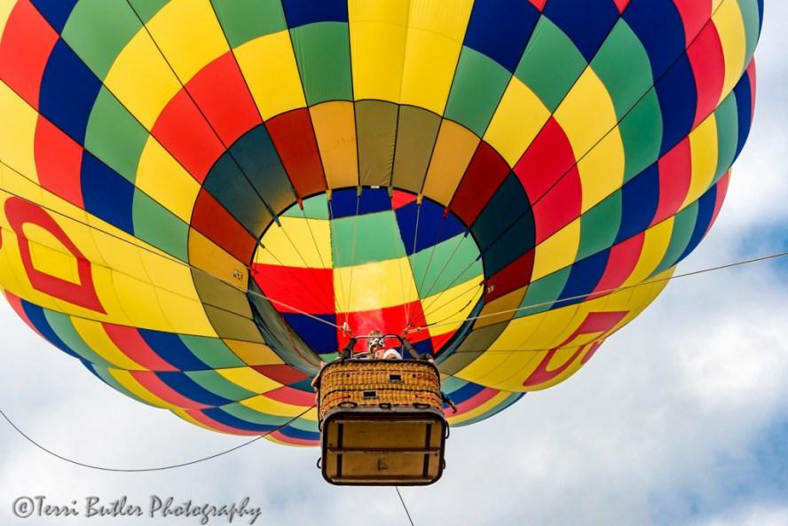 balloona-palooza_6560