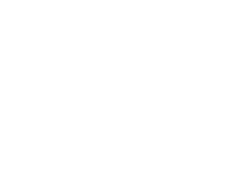 Terrica Wedding Industry Educator