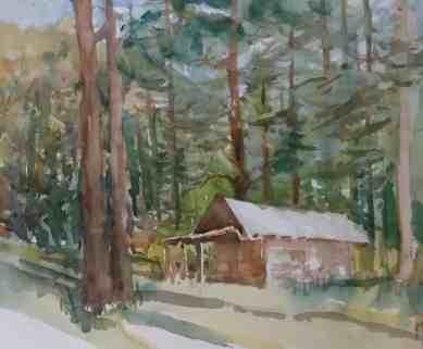 General Springs Cabin, Morning