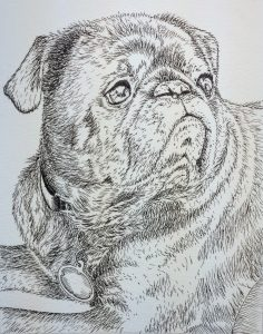 Pet portrait in ink alone.